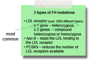 3-types-of-FH-mutations